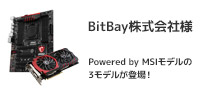 NEXUS&MSIのコラボレーションモデル BitBay株式会社様