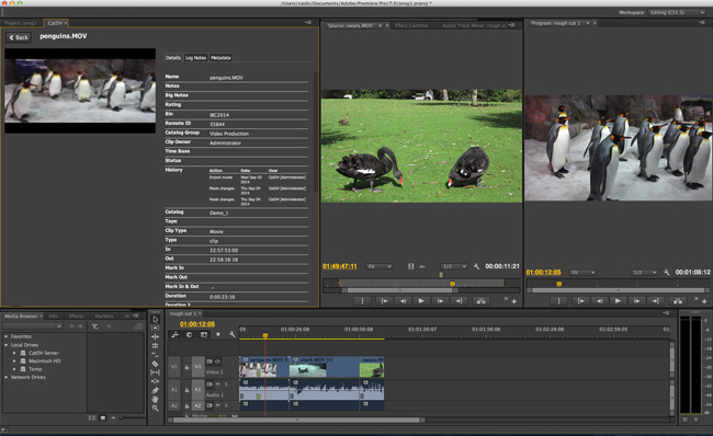 Square Box社、IBC 2014にて新製品「CatDV for Adobe Anywhere for video」を発表