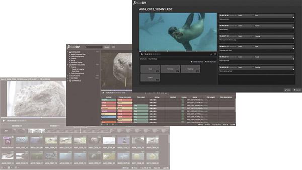 Square Box Systems社、CatDVに接続する、すべてが新しいWeb 2.2 Advancedを発表