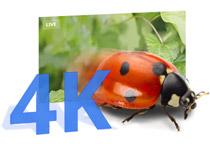 4K/60fpsの綺麗な映像出力に対応