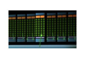 NVIDIA パラレルデータキャッシュ